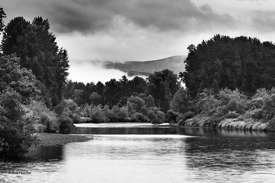 The Snoqualmie River peacefully wends its way through the Carnation Valley on  a morning with low clouds and fog hugging the...