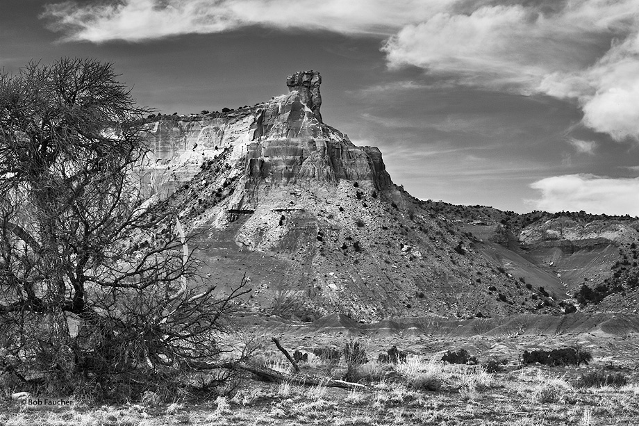 New Mexico,Ghost Ranch,Chimney Rock,snag, photo