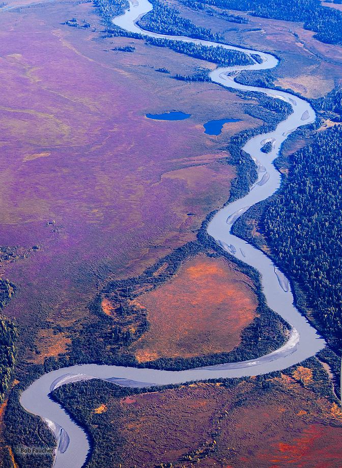wetlands,river,meander,Denali NP,Alaska,Muskeg, photo