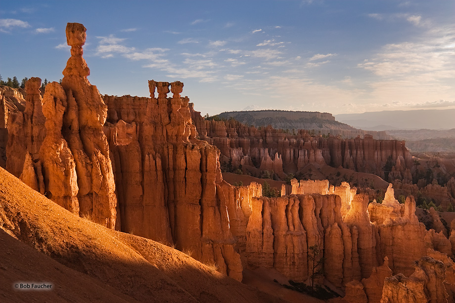 A cluster of hoodoos is struck by a small shaft of morniing sunlight causing them to glow, outshining their more famous neighbor...