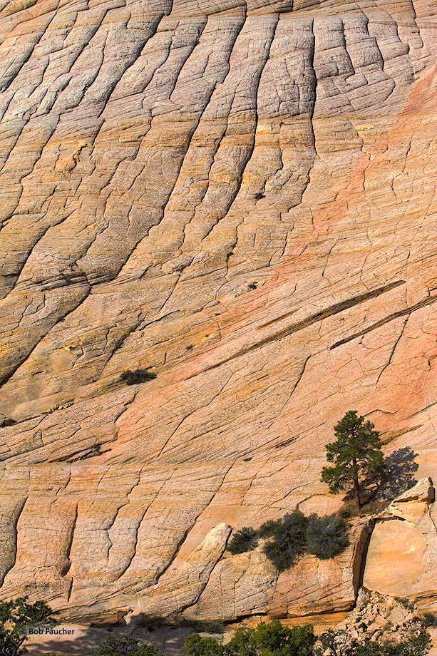 Boulder,Utah,Tabular Cross Bedding, photo