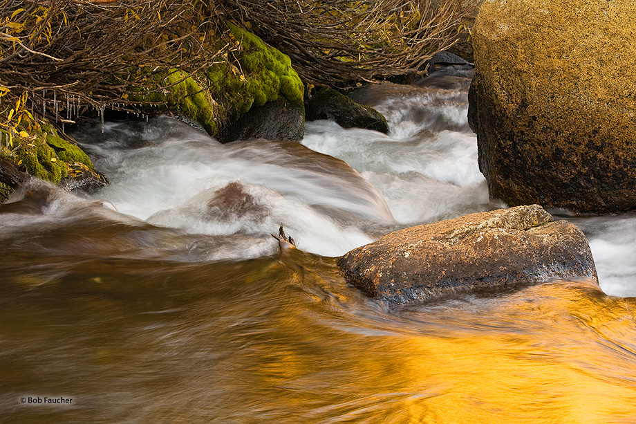 A small drop in the creek marks the border between the flat water, with its golden reflection above the drop, and the white water...