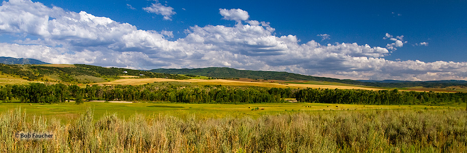 Elk River valley near Steamboat Springs, Colorado is a gorgeous high-country valley that is blessed with wide expanses, pasture...