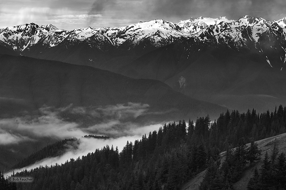 Morning fog fills the Elwha River Valley between Hurricane Ridge and the Olympic mountains