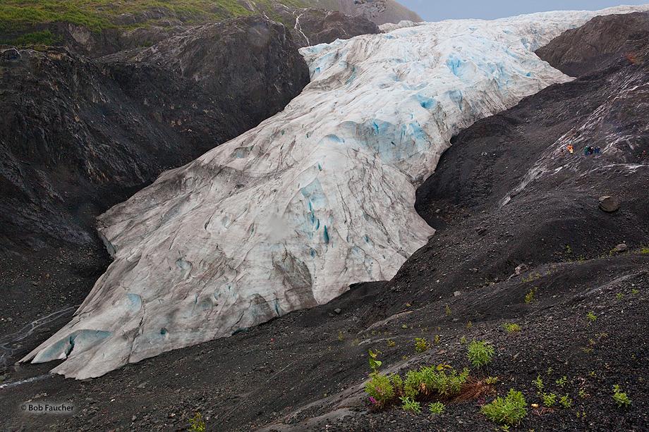 Exit Glacier,Kenai Fjords NP,Seward,Alaska, photo