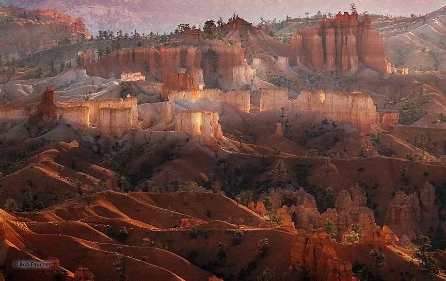 Sunrise lights up the hoodoos, the quintessential feature of Bryce Canyon, as viewed from across the canyon at Sunset Point....