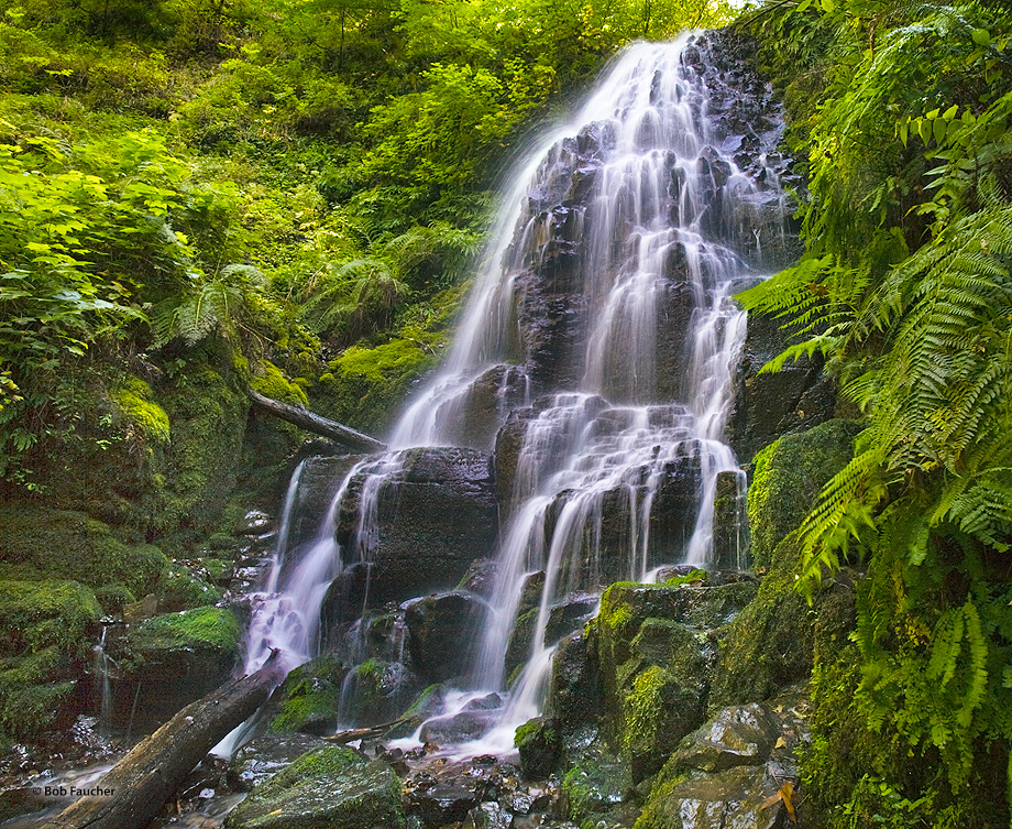 Fairy Falls is a 20-foot waterfall on the Oregon side of the Columbia River Gorge. While small, this fan-shaped waterfall  cascades...