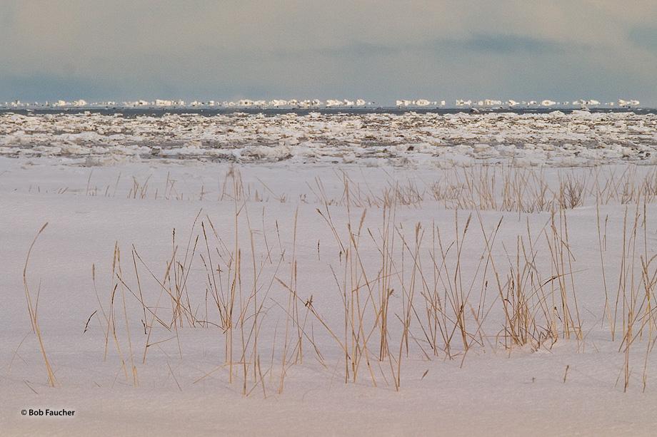 Churchill,Manitoba, photo