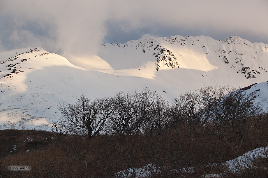 Mountain,cloud,Kodiak, photo