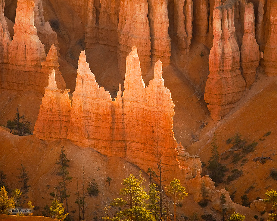 An isolated group of pointed hoodoos, strongly lit by early morning sunlight, glow like flames.