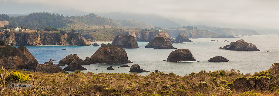 Cuffy's Cove,Elk,fog,sea stacks,Mendocino Coast, photo