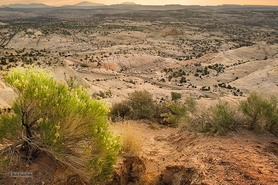 Head of Rocks Overlook,Utah,sunrise,blooms,deserts,textures,scenic route, photo