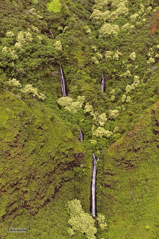 Kalalau Valley Falls,Kauai,green, photo