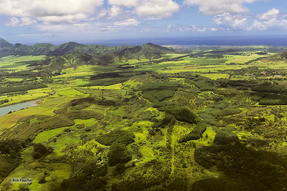 Just outside of Kilauea is the beautiful Kalihiwai valley, whose fertile lands are watered by the river of the same name.