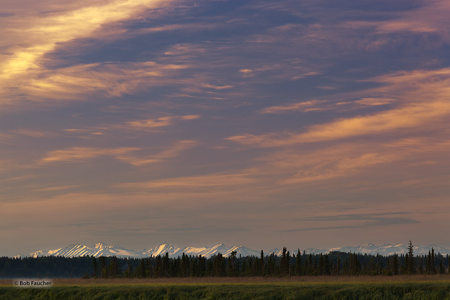 With the Kenai River wetlands in the foreground, dawn light graces the overhead clouds as well as the peaks of the Keani Range...