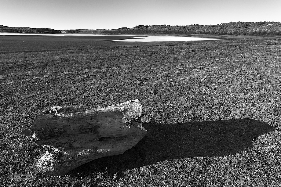Lake Mendocino; drought; low water level, photo