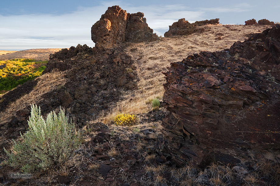 Lines formed by the edges of the rocks and grasses lead to the wildflowers on the lower left of the image.