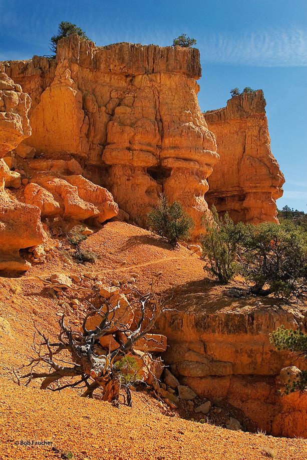 Losee Canyon,Utah, photo
