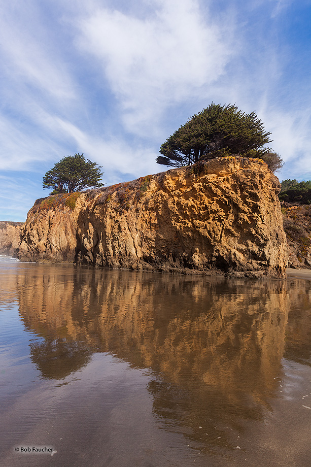 The headland bluff and krummholz of MacKerricher SP, with wind blown clouds overhead, are reflected in the wet sand from receding...