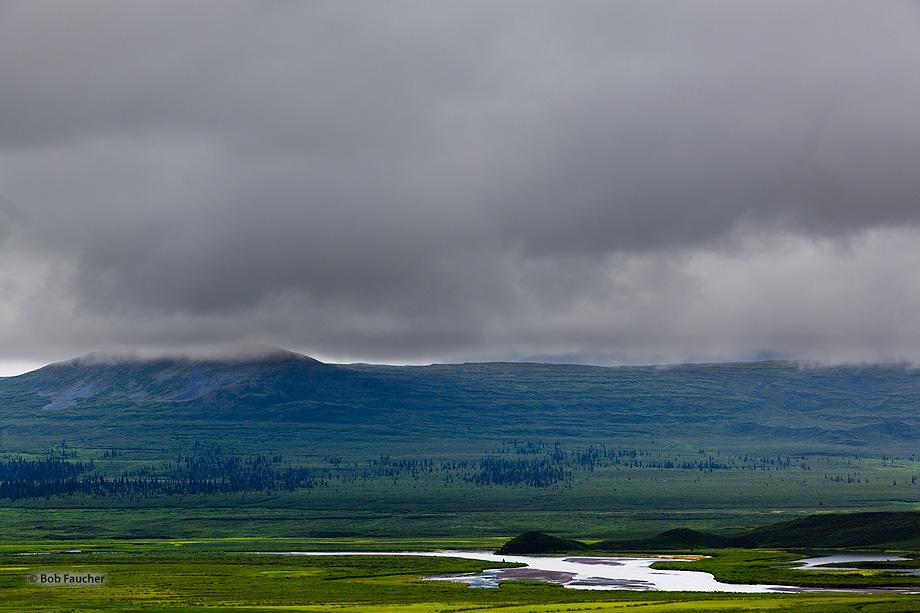 Denali Highway,mile 41,Maclaren River Valley,glacier, photo