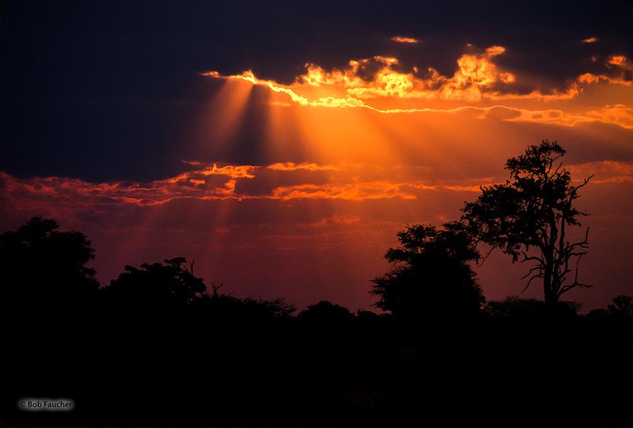 Botswana,Africa,Okavango delta,Mboma,crepuscular rays, photo