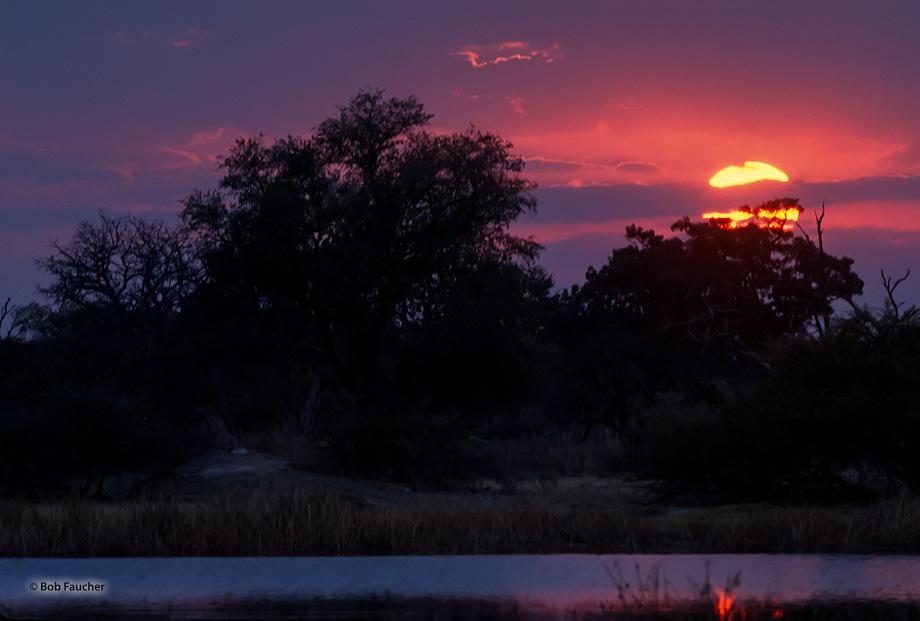 Botswana,Africa,sunset,Mboma,Okavango delta, photo