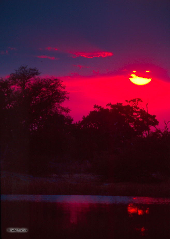 Sunset, Mboma Island, Okavango Delta, photo