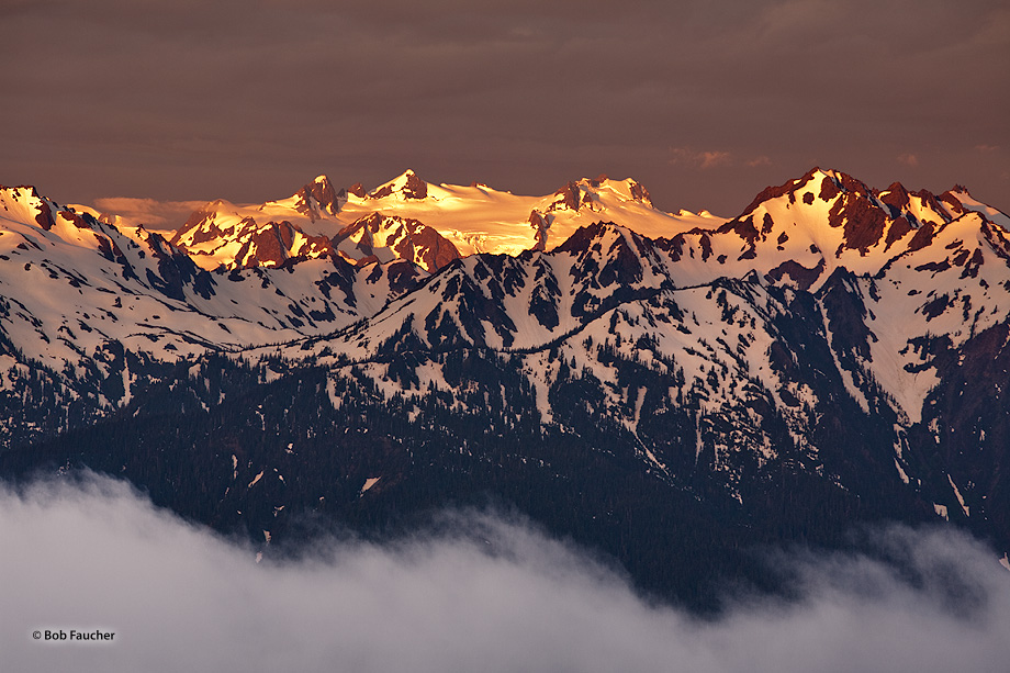 First light of dawn highlights the rugged Olympic mountains while ground fog hangs in the valley below. Olympic NP contains these...