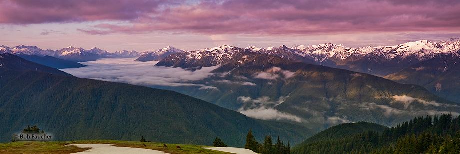 Hurricane Ridge,Olympic Mountain Range,morning, photo