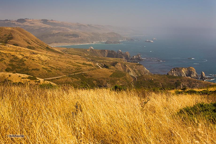Mendocino,coast,Highway 1,sea stacks,fog,Little River, photo