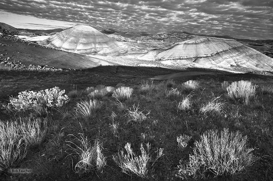 First light illuminates the taller painted hills and taller grasses in the foreground while the back of the hill remains in shadow...