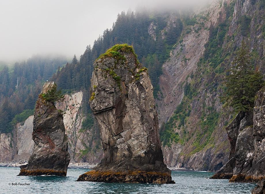 Spires,Porcupine Cove,Aialik Peninsula,Kenai,Fjords NP,Kenai Peninsula,Alaska, photo