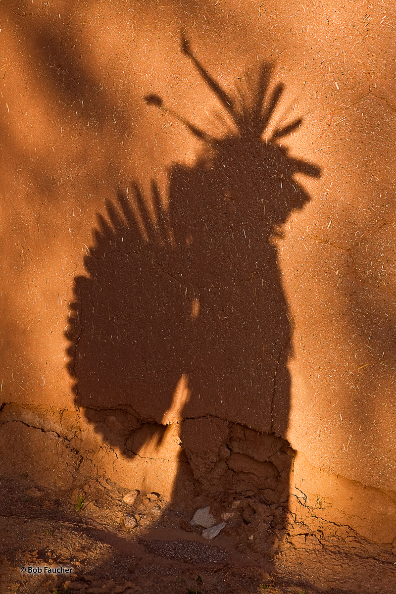 As I was speaking with a native dancer who was taking a break between performances I noticed his shadow. Low-angle, afternoon...
