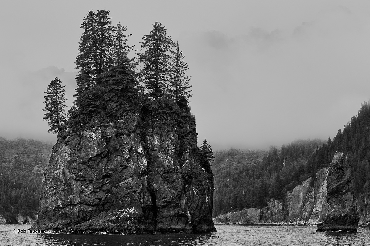 The mountains surrounding Porcupine Cove are shrouded in fog. The fog helps to put the bacground in recession, allowing one of...