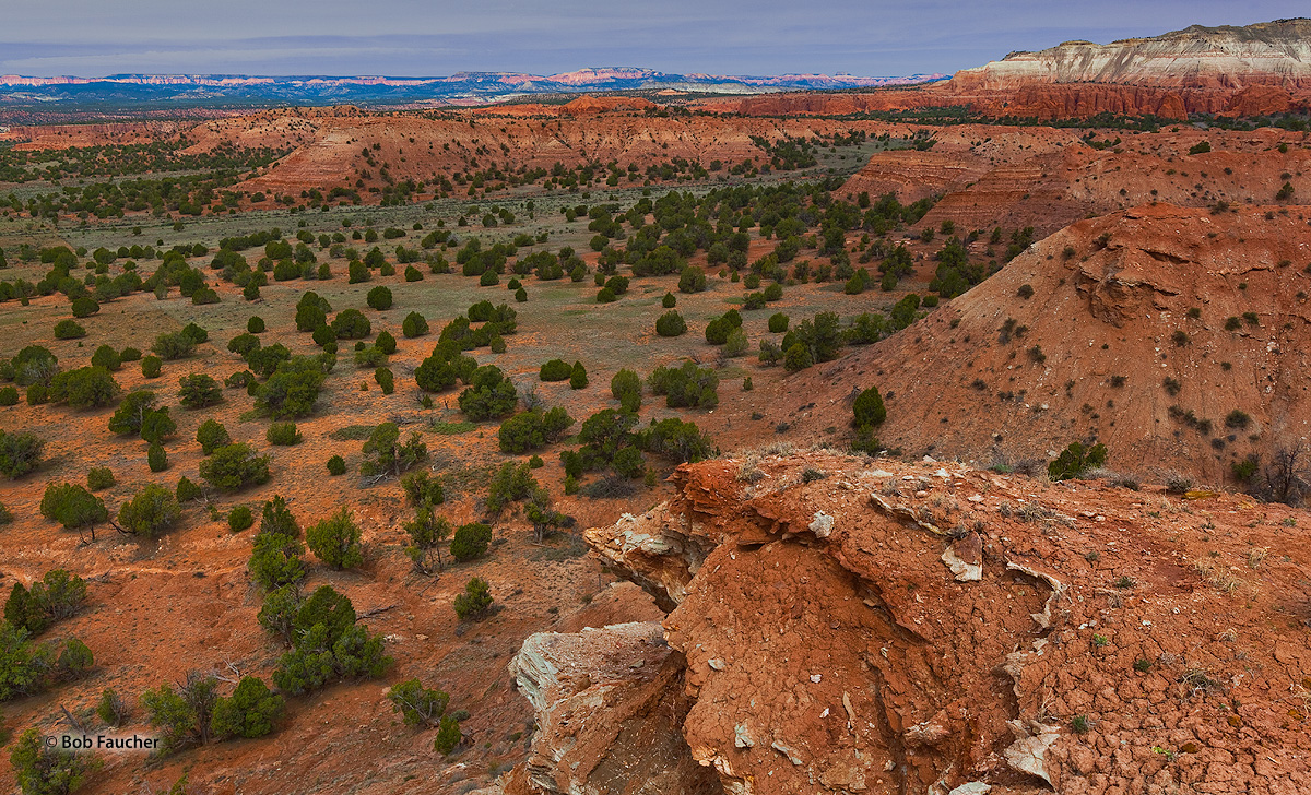 Angel's Palace Trail affords magnificent views of Kodachrome Basin, Bryce Canyon—the characteristic Pink Cliffs are seen along...