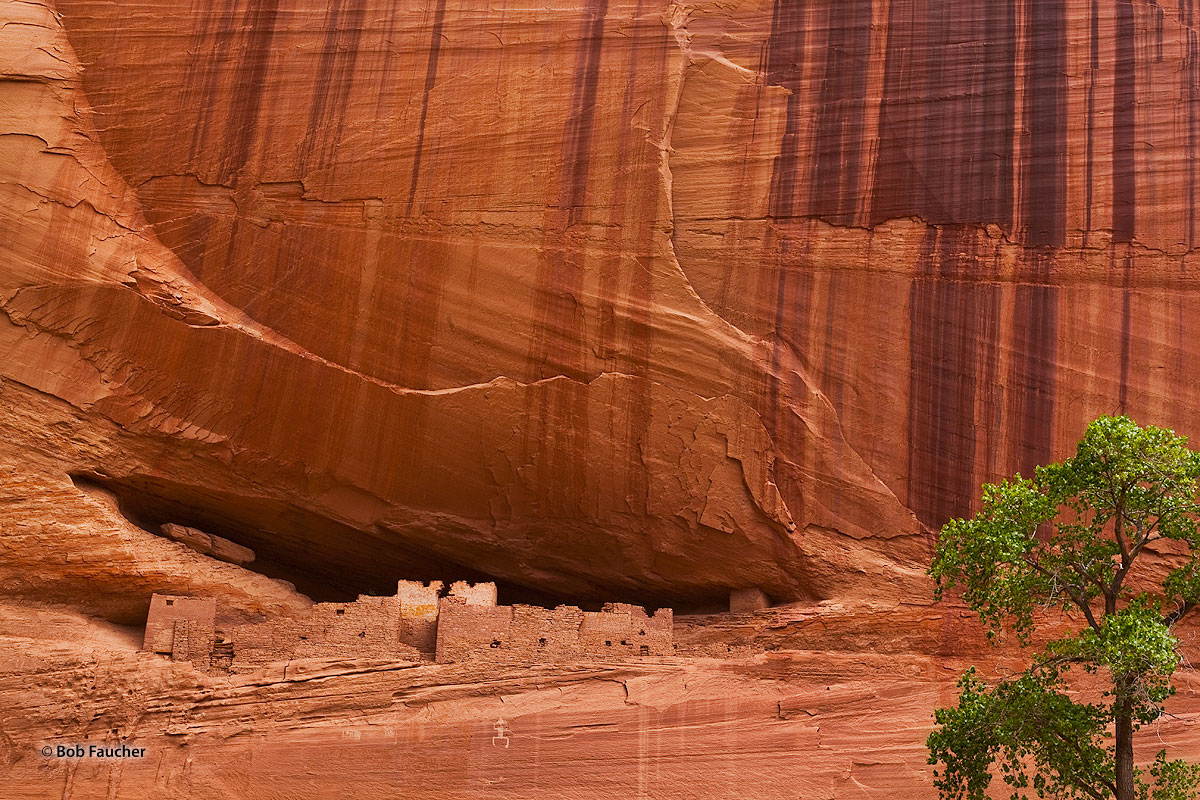 White House ruins, Canyon de Chelly, archaic petroglyph, photo