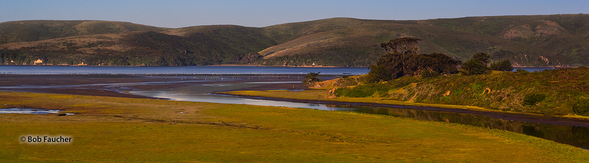 Tomales Bay estuary, photo