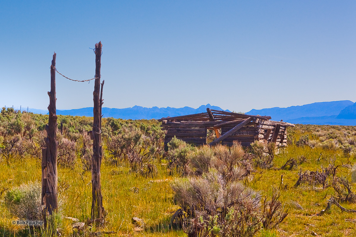 Fortification Range Wilderness, Spring Valley, derelict log cabin, photo