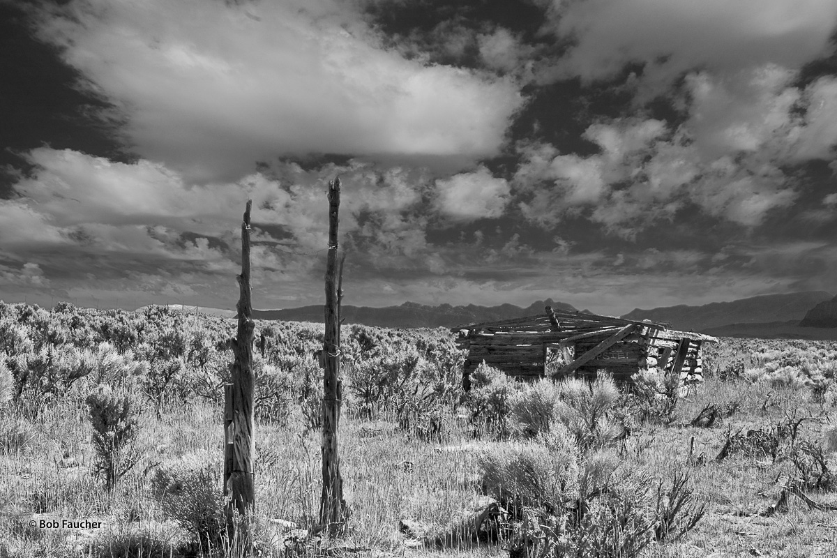 In the Spring Valley of Nevada, below Fortification Range, a log cabin succumbs to the elements—it's roof collapsed and logs...