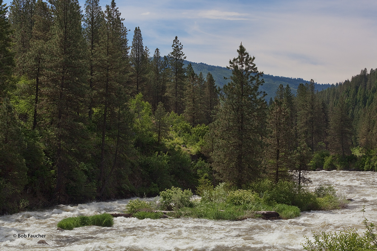 North Fork Payette River, Spring runnoff, photo