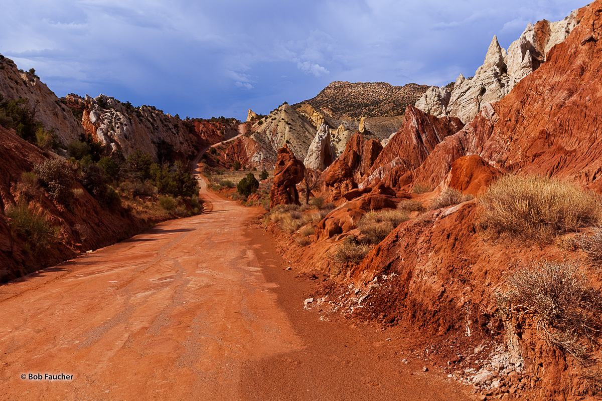 The most spectacularly photogenic area along the Cottonwood Canyon Road. Often referred to as Candyland due to its white and...