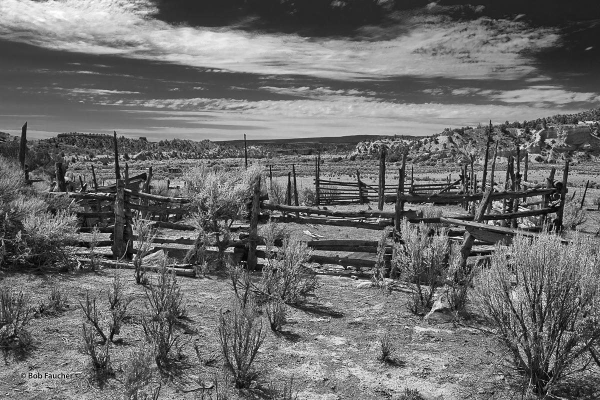 Corral that has fallen into disrepair following the last cattle drive