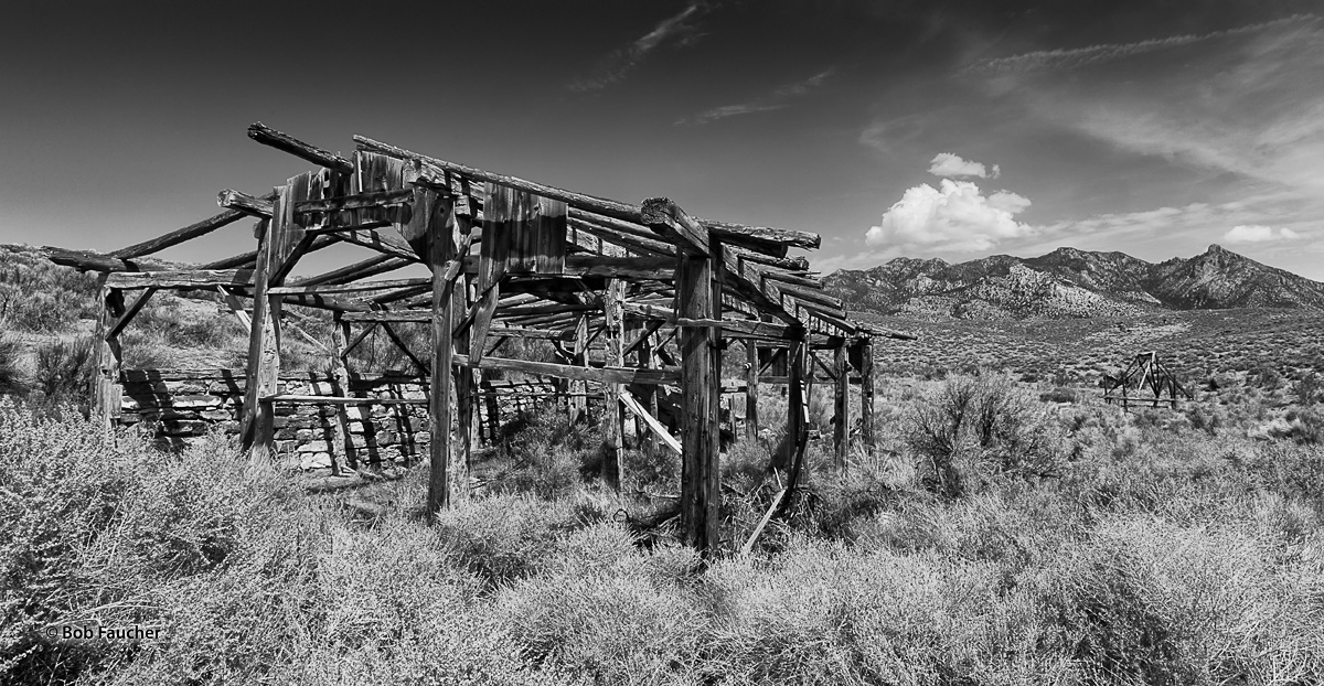 The collapsing remains of an old barn and a second, smaller structure are slowly being engulfed by vegetation in Big Springs...