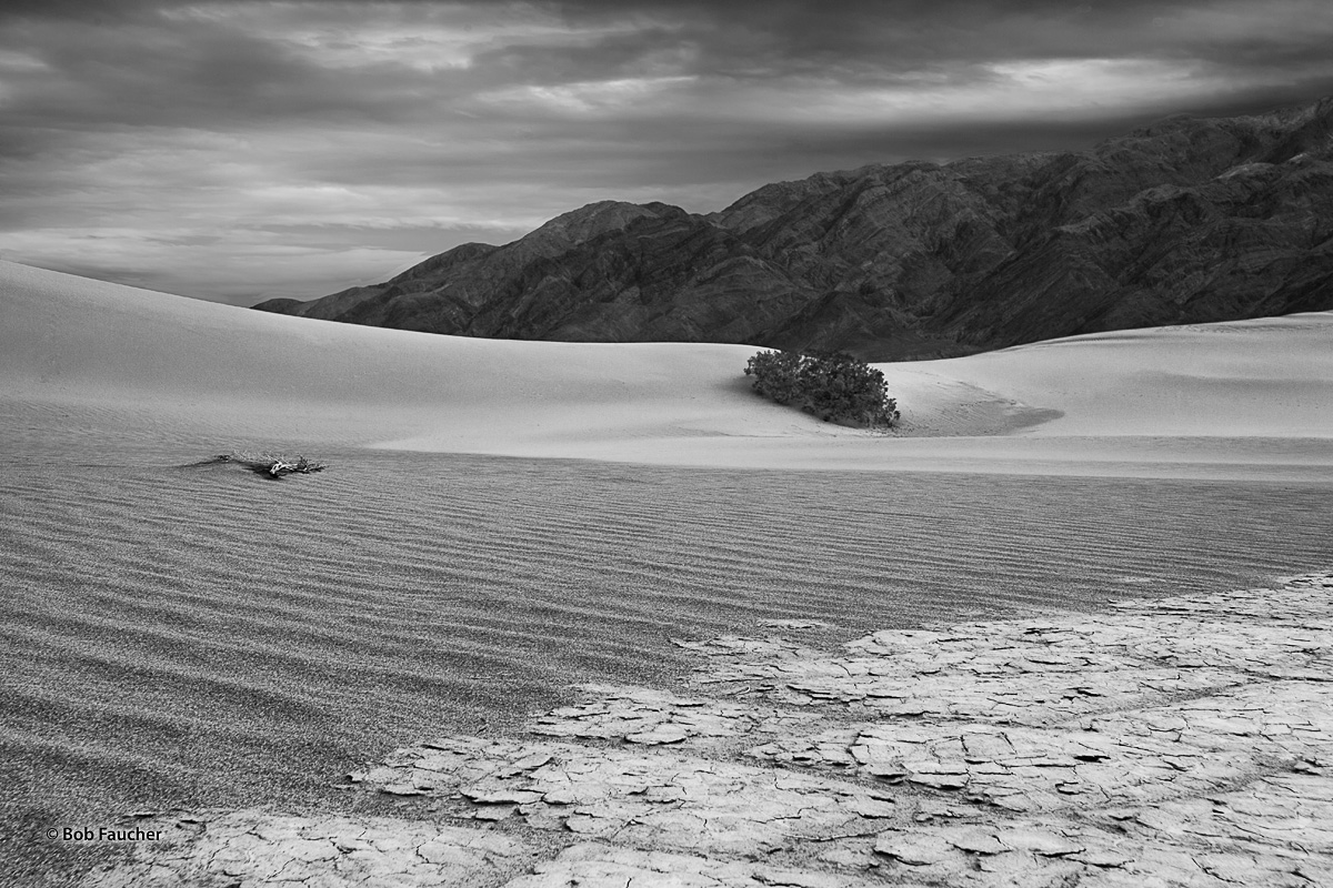 Sand dunes, with and without finer wind-blown patterns, juxtaposed with cracked playa, rocks, live and dead vegetation and clouds...
