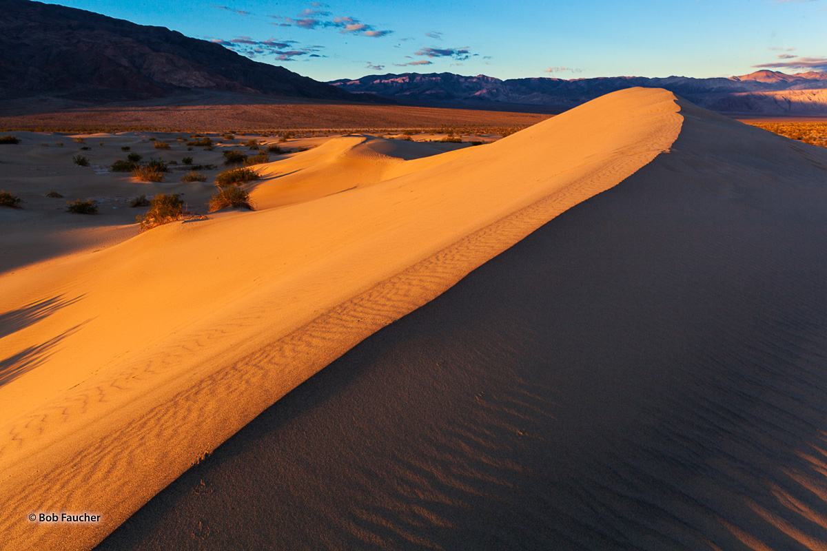 Early morning sun strikes the slipface (the side of a dune without wind) of a dune in Mesquite Falt Sand Dunes in Death Valley...