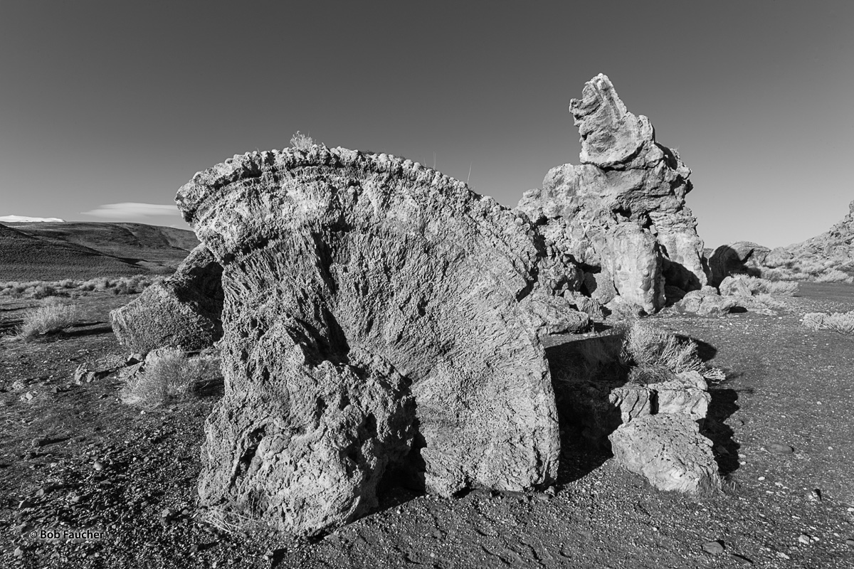 Cross-sectional view of a tubular tufa on the shore at Monument Rock, a site on the shore of Pyramid Lake. The outer light-colored...