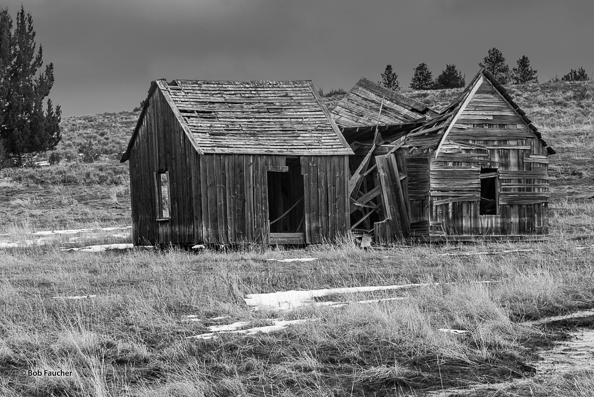 Derelict Building, Lewiston Hwy, OR, photo