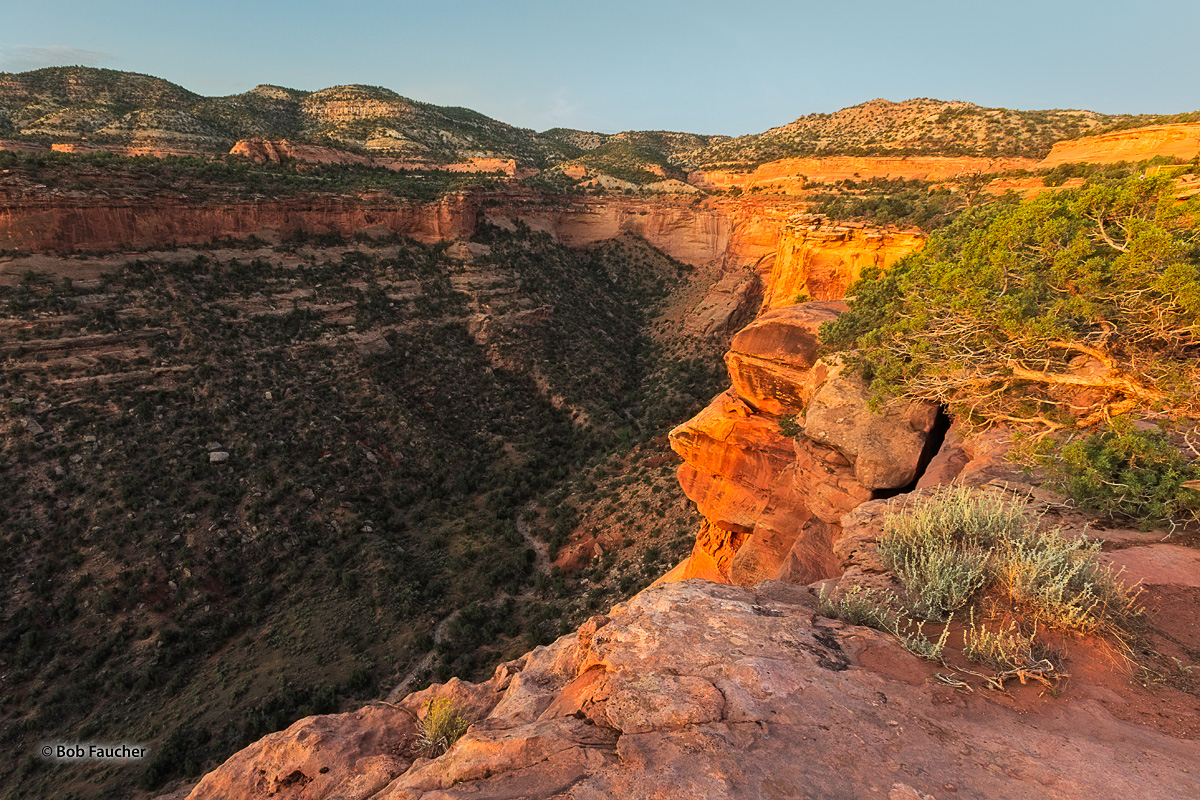 Soft morning light floods a side canyon of Monument Canyon in Colorado NM