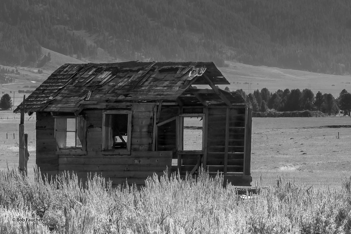 Small herdsman's cabin suffering from disuse and lack of maintenance in the Little Salmon River Valley near New Meadows, Idaho...