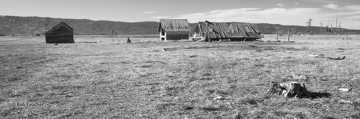 A group of neglected farm buildings in the Little Salmon River Valley near New Meadows, Idaho